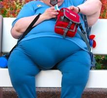 obesity-disneyworld-277827-o