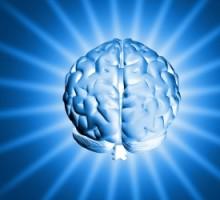hoje1254880_shiny_brain_