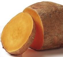 batata yakon